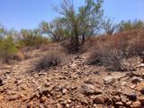 9504 Desert Wash Trail - Photo 5