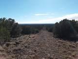 13 County Road 8059 - Photo 10