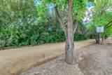 214 Cactus Wren Drive - Photo 39