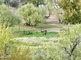 44028 Spur Cross Road - Photo 49