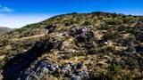 8545 Sierra Vista Drive - Photo 59