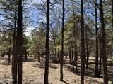 1644 Sugar Pine Drive - Photo 5