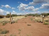 181 River Springs Ranch - Photo 5