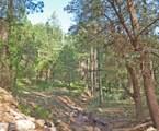 251 Canyon Drive - Photo 43