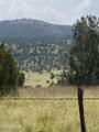 42173 Deer Camp Trail - Photo 12