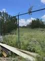 42173 Deer Camp Trail - Photo 50