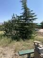 42173 Deer Camp Trail - Photo 53