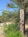 38557 School House Road - Photo 4
