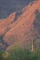 8227 Sunset View Drive - Photo 10