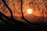 8227 Sunset View Drive - Photo 11
