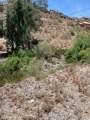 6702 Palm Canyon Drive - Photo 7