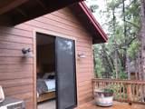4300 Sugar Pine Loop - Photo 29