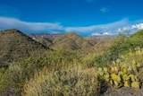 7718 Golden Reef Road - Photo 84
