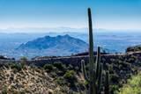 8545 Sierra Vista Drive - Photo 45