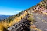 8545 Sierra Vista Drive - Photo 46