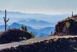 8545 Sierra Vista Drive - Photo 51