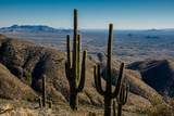 8545 Sierra Vista Drive - Photo 53