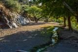 7718 Golden Reef Road - Photo 75