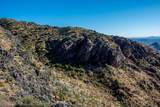 8545 Sierra Vista Drive - Photo 14