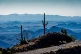 8545 Sierra Vista Drive - Photo 9