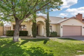 3917 W Misty Willow Lane, Glendale, AZ 85310 (MLS #5563483) :: Sibbach Team - Realty One Group