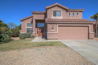 7478 W Monona Drive, Glendale, AZ 85308 (MLS #5564296) :: Sibbach Team - Realty One Group