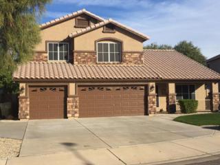 5456 W Kristal Way, Glendale, AZ 85308 (MLS #5564361) :: Sibbach Team - Realty One Group
