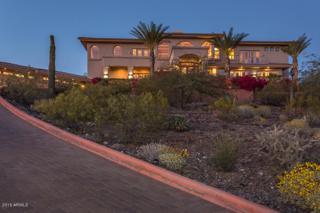920 E Waltann Lane, Phoenix, AZ 85022 (MLS #5571903) :: Sibbach Team - Realty One Group