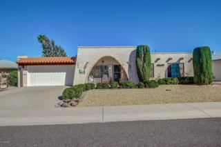 11070 W Winchester Drive, Sun City, AZ 85351 (MLS #5574460) :: Sibbach Team - Realty One Group