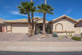 14480 W Morning Star Trail, Surprise, AZ 85374 (MLS #5575125) :: Sibbach Team - Realty One Group