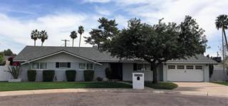 4234 E Calle Ventura, Phoenix, AZ 85018 (MLS #5575667) :: Sibbach Team - Realty One Group