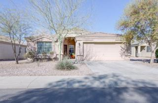 2159 N St Pedro Avenue, Casa Grande, AZ 85122 (MLS #5576142) :: Sibbach Team - Realty One Group