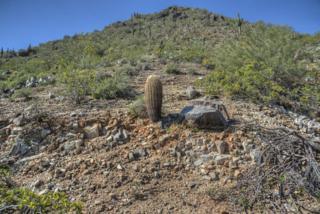 4201 E Upper Ridge Way, Paradise Valley, AZ 85253 (MLS #5578093) :: Sibbach Team - Realty One Group