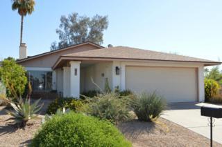 943 N 86TH Way, Scottsdale, AZ 85257 (MLS #5578893) :: Sibbach Team - Realty One Group