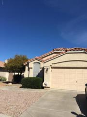 10339 N 58TH Lane, Glendale, AZ 85302 (MLS #5578896) :: Sibbach Team - Realty One Group