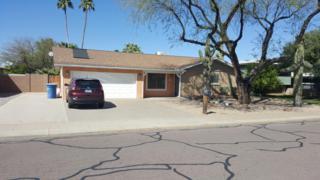 1904 E Libra Drive, Tempe, AZ 85283 (MLS #5578983) :: Sibbach Team - Realty One Group