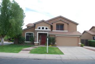 1163 E Loma Vista Street, Gilbert, AZ 85295 (MLS #5579066) :: Sibbach Team - Realty One Group