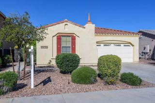 29752 N 121ST Avenue, Peoria, AZ 85383 (MLS #5579073) :: Sibbach Team - Realty One Group