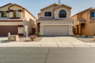 3559 W Whispering Wind Drive, Glendale, AZ 85310 (MLS #5579101) :: Sibbach Team - Realty One Group