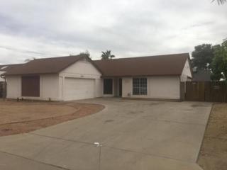 7141 W Paradise Drive, Peoria, AZ 85345 (MLS #5579111) :: Sibbach Team - Realty One Group