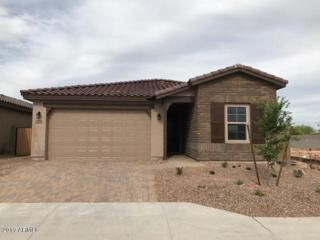 12110 W Desert Moon Way, Peoria, AZ 85383 (MLS #5579115) :: Sibbach Team - Realty One Group