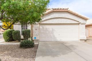 20404 N 98TH Lane, Peoria, AZ 85382 (MLS #5579148) :: Sibbach Team - Realty One Group