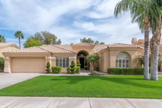 1780 W Wisteria Drive, Chandler, AZ 85248 (MLS #5579153) :: Sibbach Team - Realty One Group