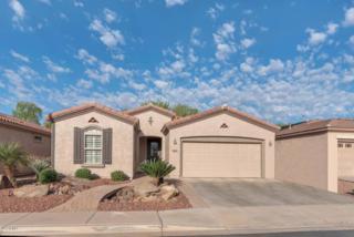 5484 S Peachwood Drive, Gilbert, AZ 85298 (MLS #5579168) :: Sibbach Team - Realty One Group