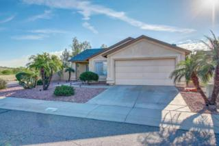 3601 W Cat Balue Drive, Glendale, AZ 85308 (MLS #5579178) :: Sibbach Team - Realty One Group