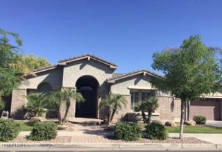 960 W Macaw Drive, Chandler, AZ 85286 (MLS #5579189) :: Sibbach Team - Realty One Group