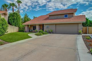 7468 E Willowrain Court, Scottsdale, AZ 85258 (MLS #5579213) :: Sibbach Team - Realty One Group