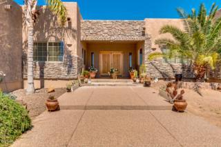 606 E Tanya Trail, Phoenix, AZ 85086 (MLS #5579244) :: Sibbach Team - Realty One Group