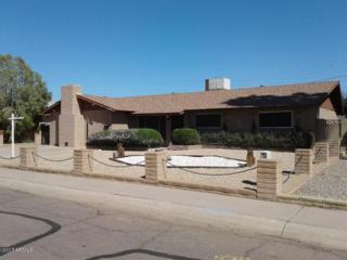 13007 N 31ST Drive, Phoenix, AZ 85029 (MLS #5579250) :: Sibbach Team - Realty One Group