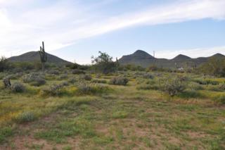 39235 C N 26TH Street, Cave Creek, AZ 85331 (MLS #5579251) :: Sibbach Team - Realty One Group